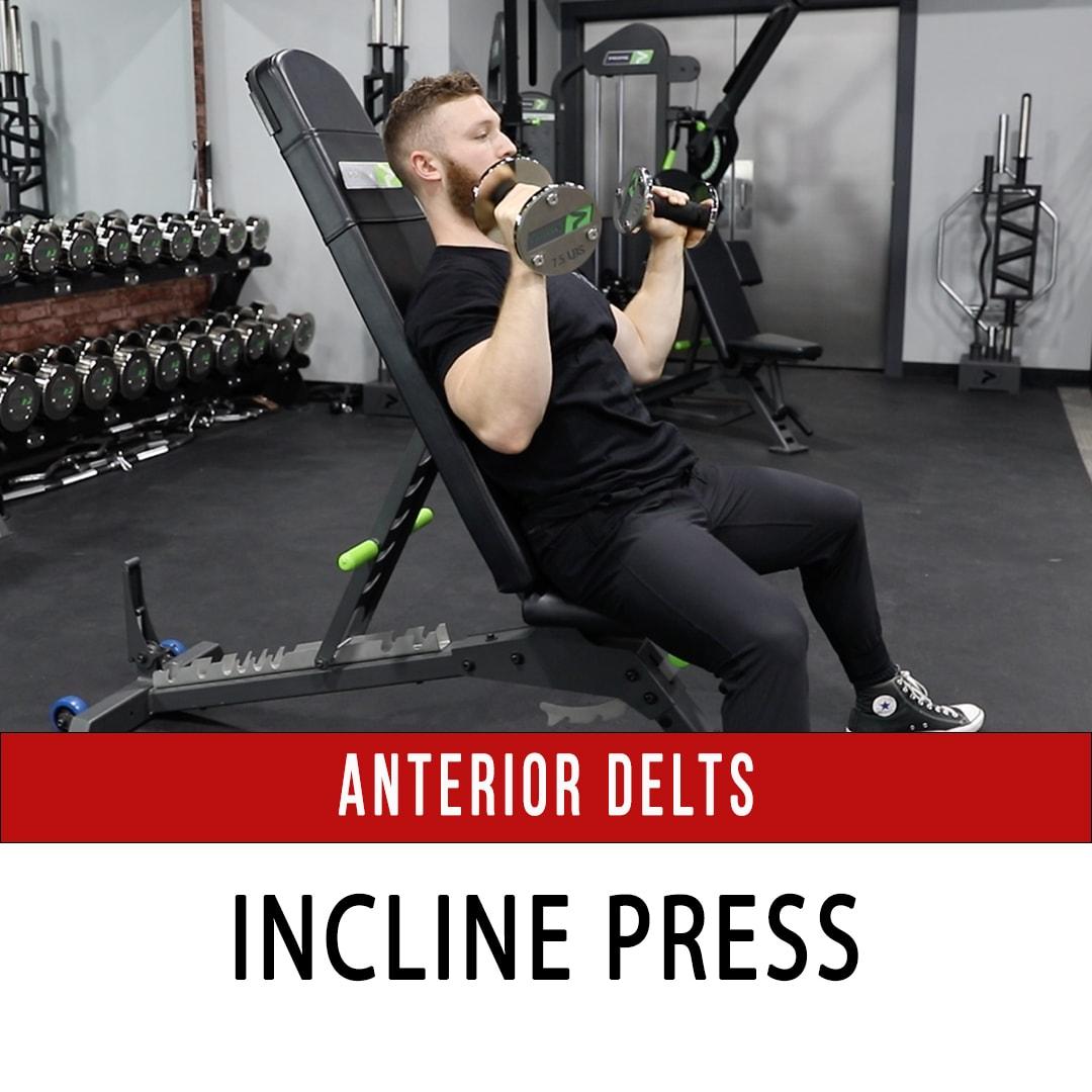 Anterior Delt Incline DB Press