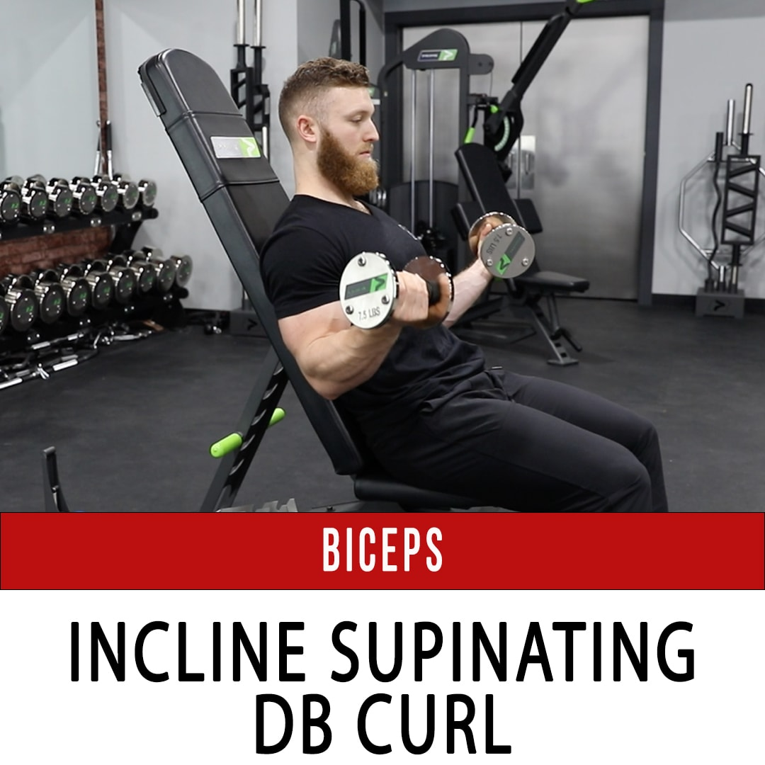 Biceps Incline Supinating DB Curl