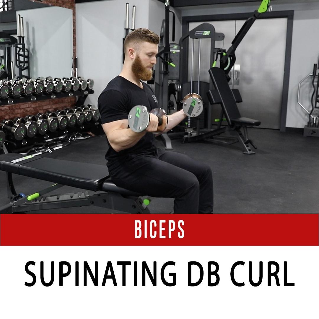 Biceps Supinating DB Curl