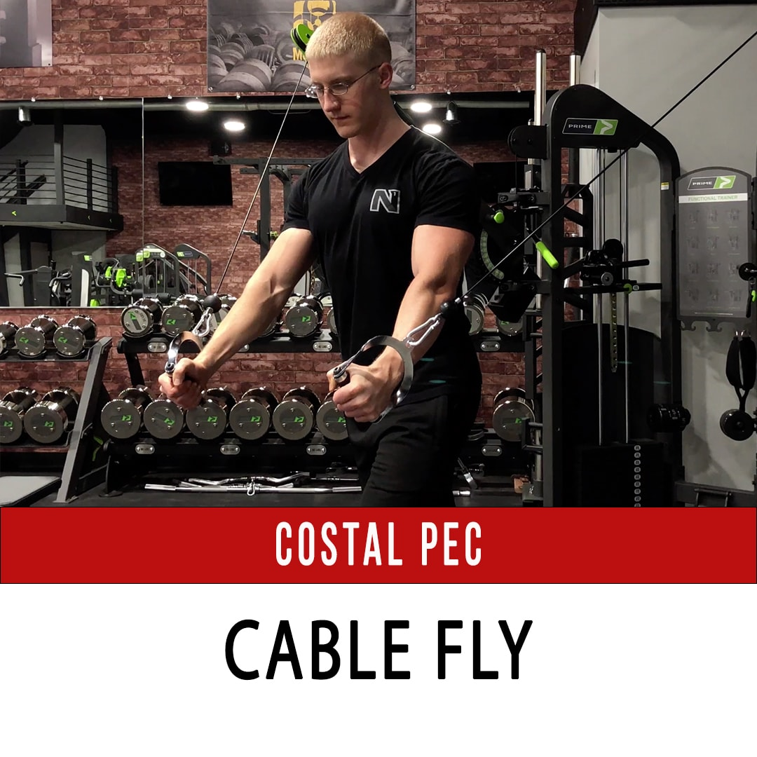 Costal Pec Cable Fly
