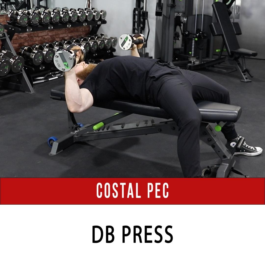 Costal Pec DB Press