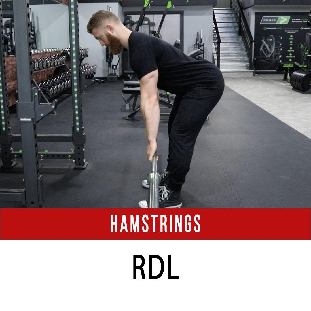 Hamstring Barbell RDL