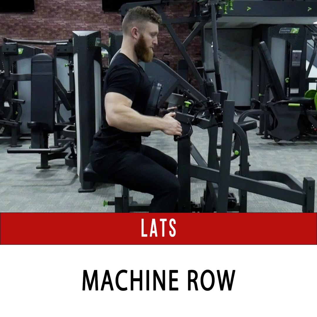 Lats Seated Row - Prime Plate Loaded