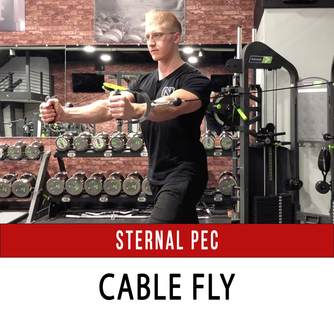 Sternal Pec Cable Fly
