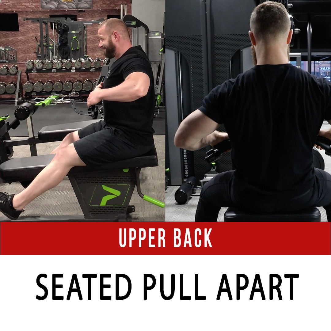 Upper Back Seated Pull Apart