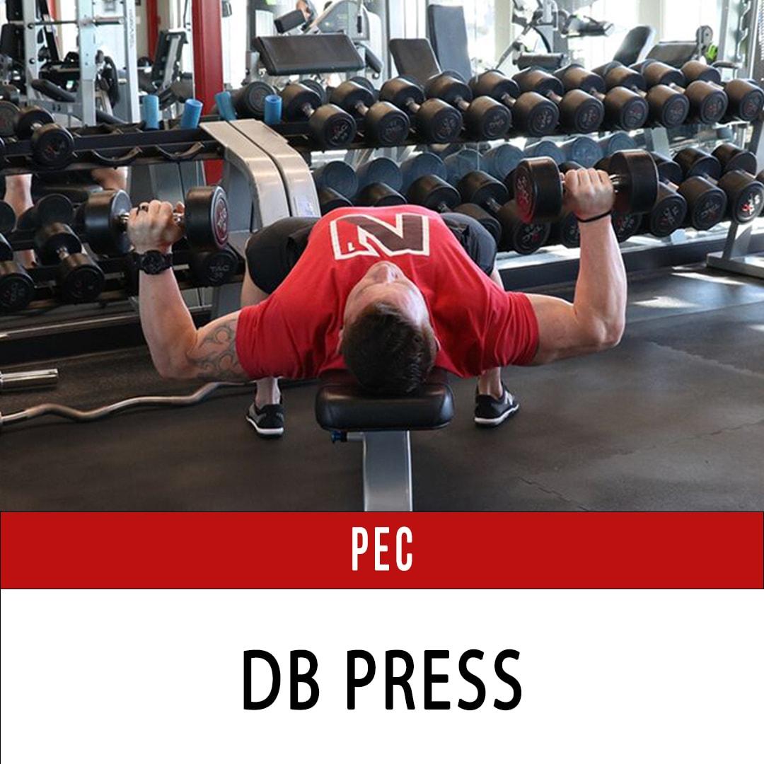 Chest DB Press