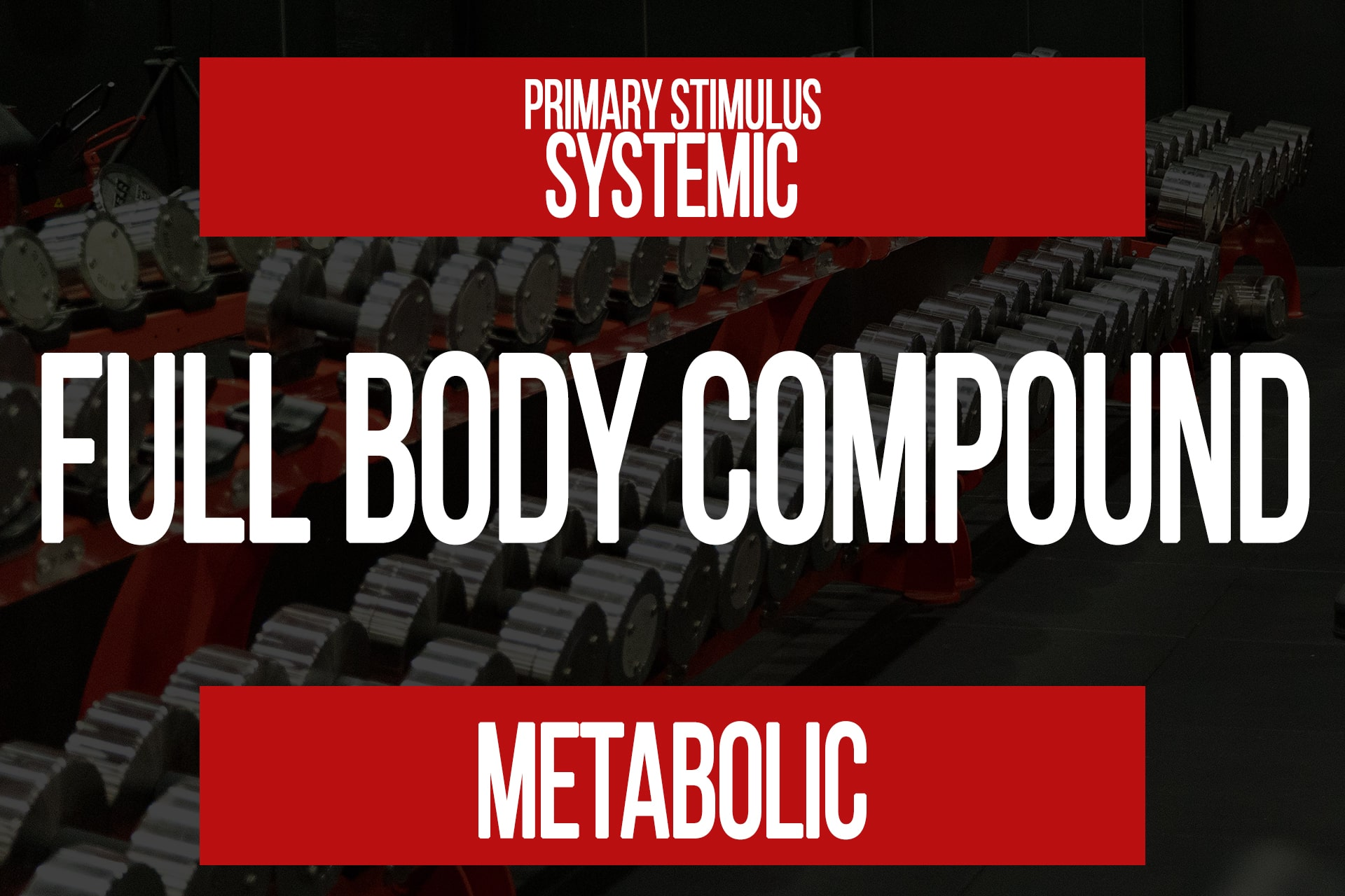 Full Body Compound Training