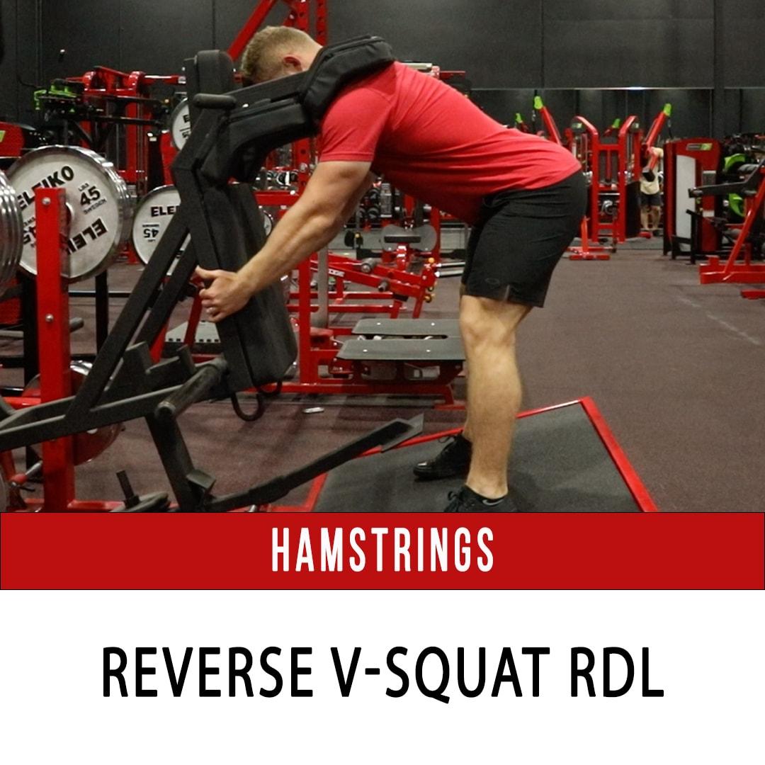 Hamstring Reverse V Squat RDL
