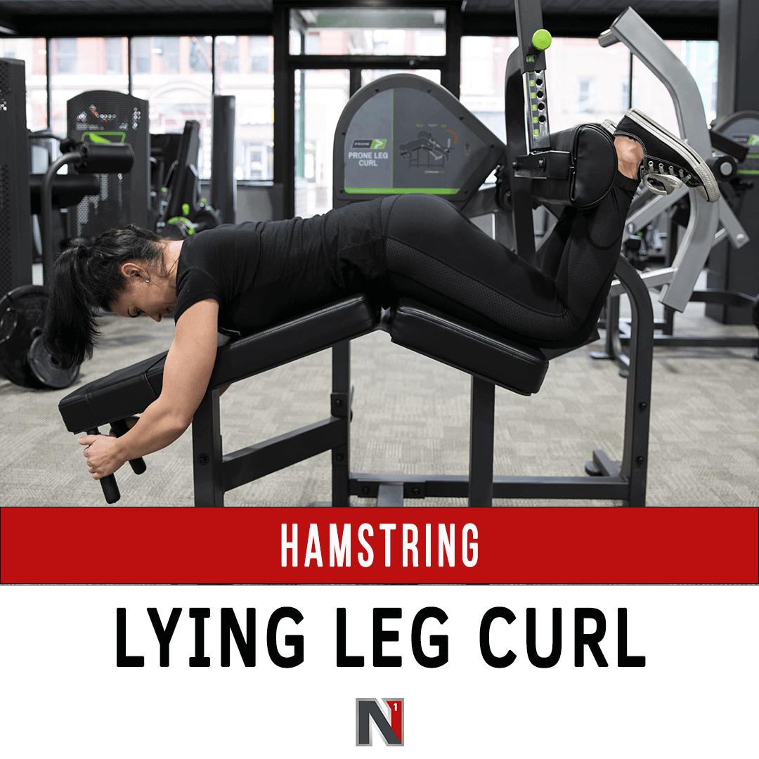 Hamstring Lying Leg Curl - Prime