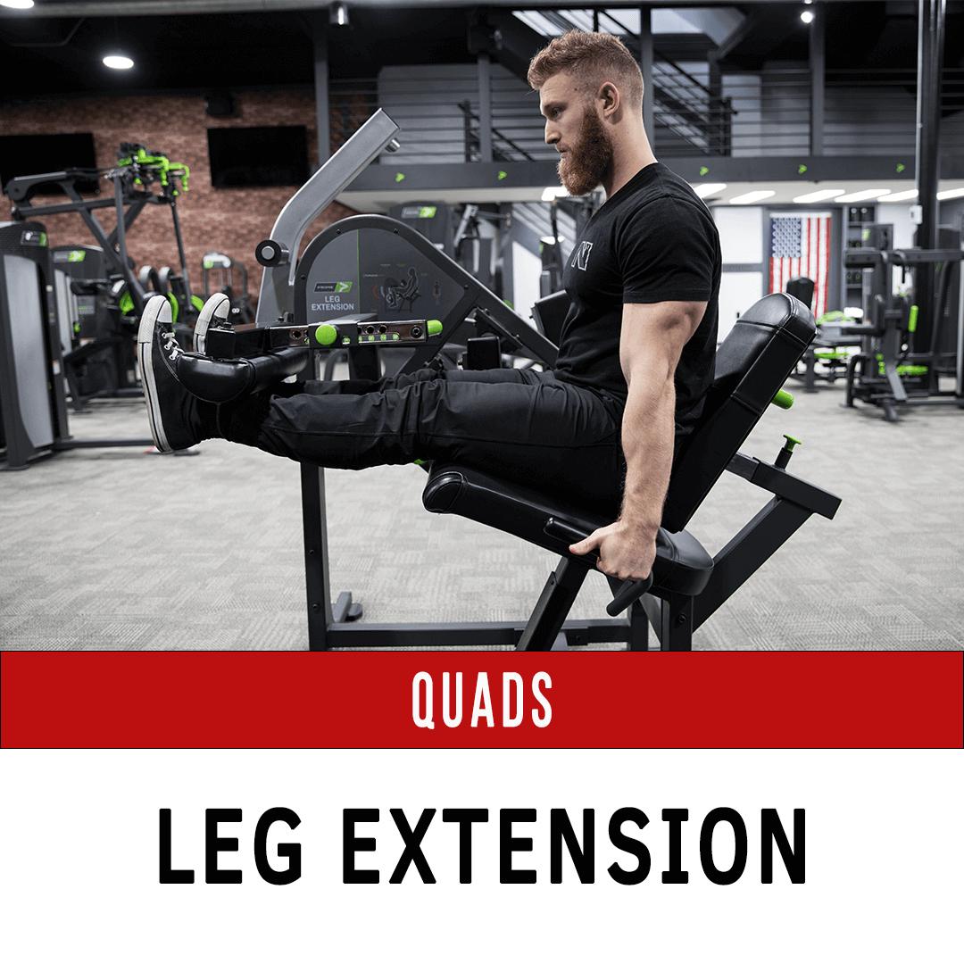Quadriceps Leg Extension