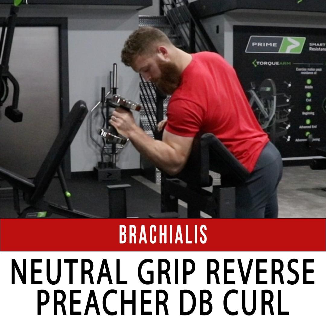 Brachialis Reverse Preacher Curl