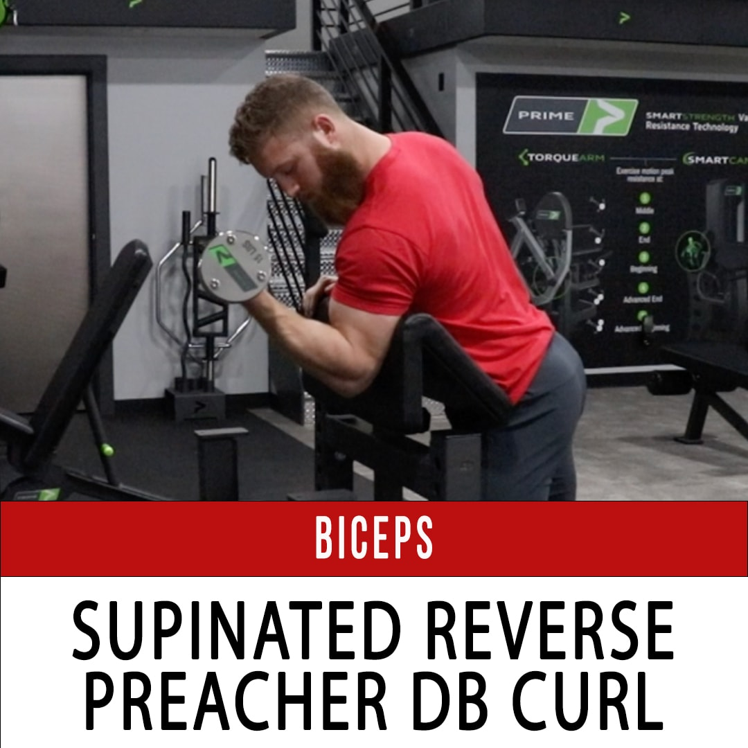 Biceps Supinated Reverse Preacher DB Curl