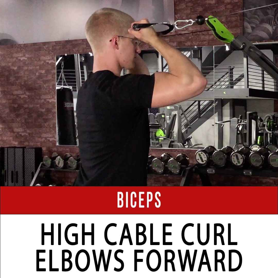 Biceps High Cable Curl Arms Forward