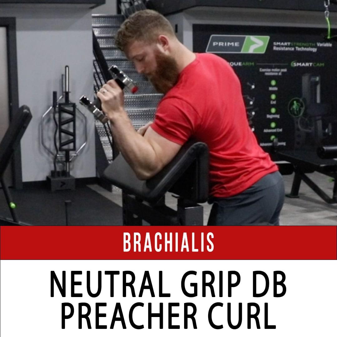 Brachialis Neutral Grip Preacher Curl