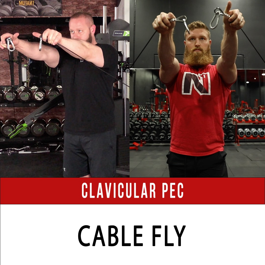Clavicular Pec Cable Fly