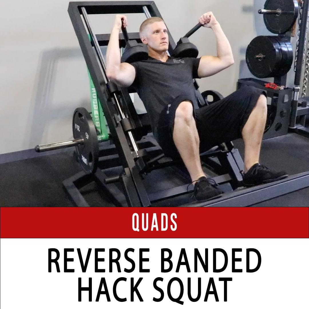 Quads Reverse Banded Hack Squat