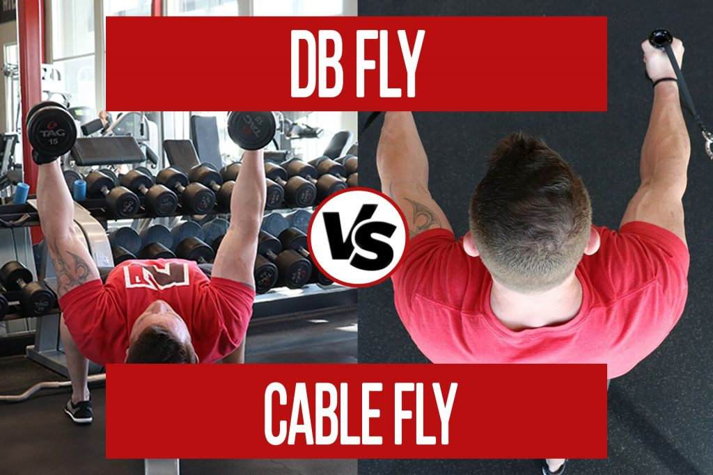 DB Fly VS Cable Fly