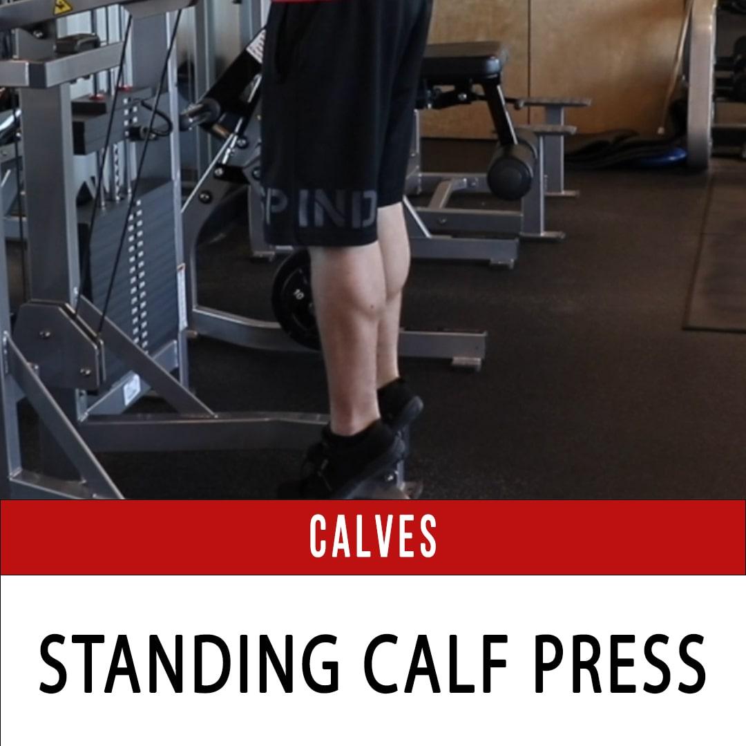Calf Press Standing