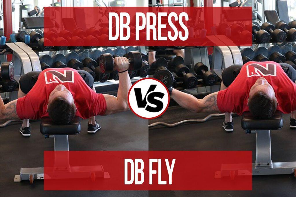 DB Press VS DB Fly