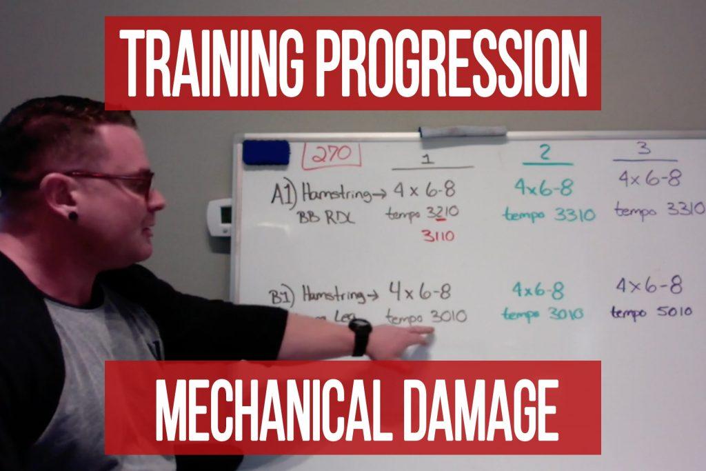 Mechanical Damage Program Progression Walkthrough