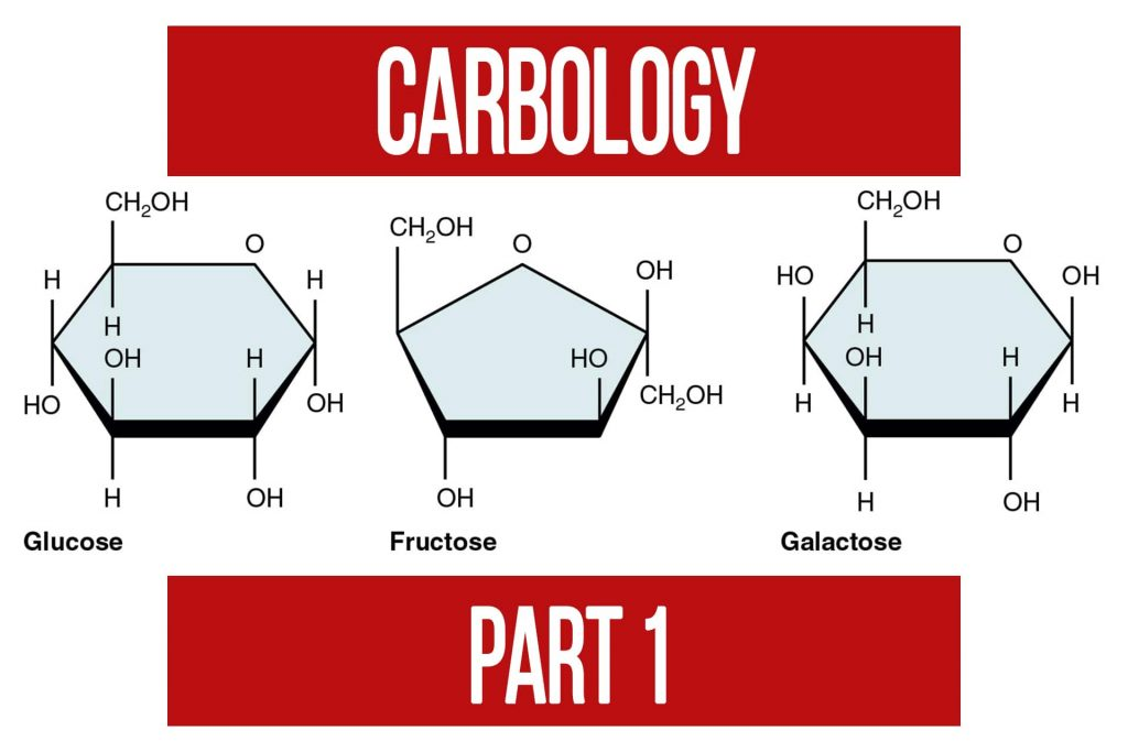 Carbology Part 1 Introduction to Carbohydrates