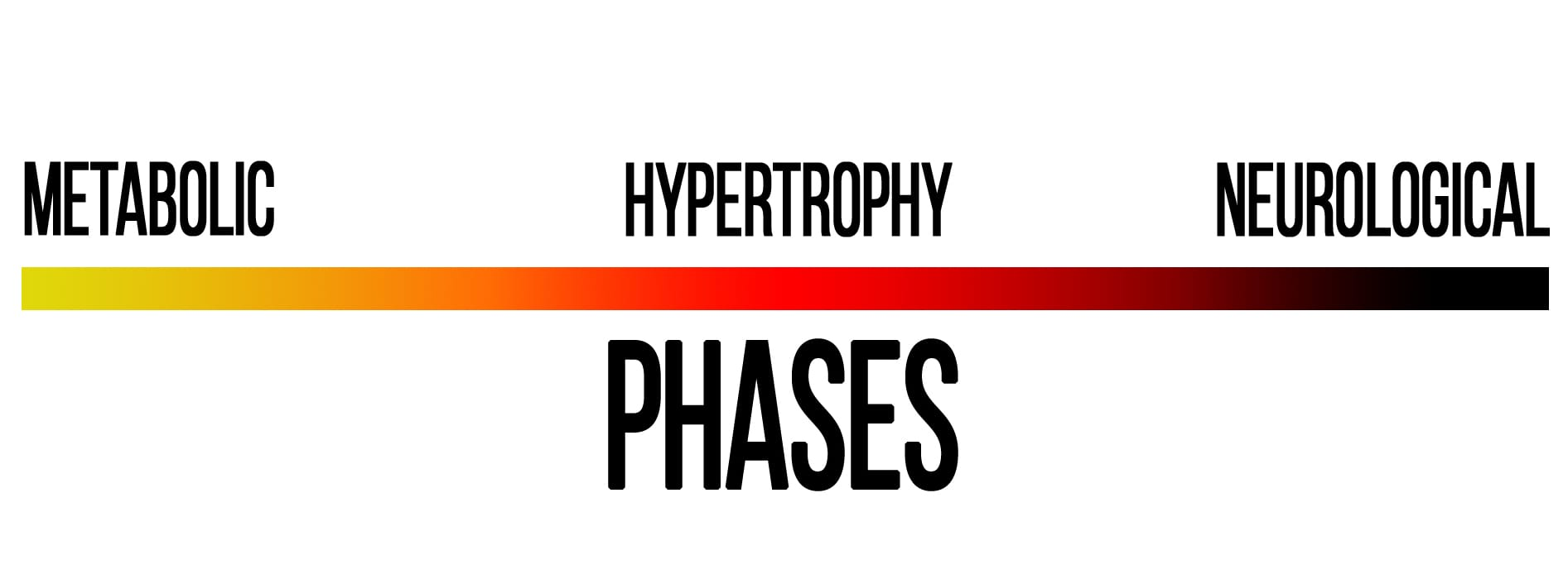 3 phases chart