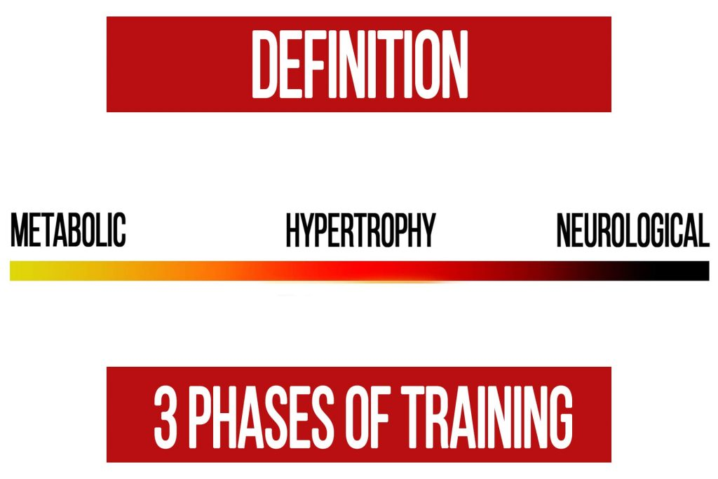 The 3 Phases of Training Explained