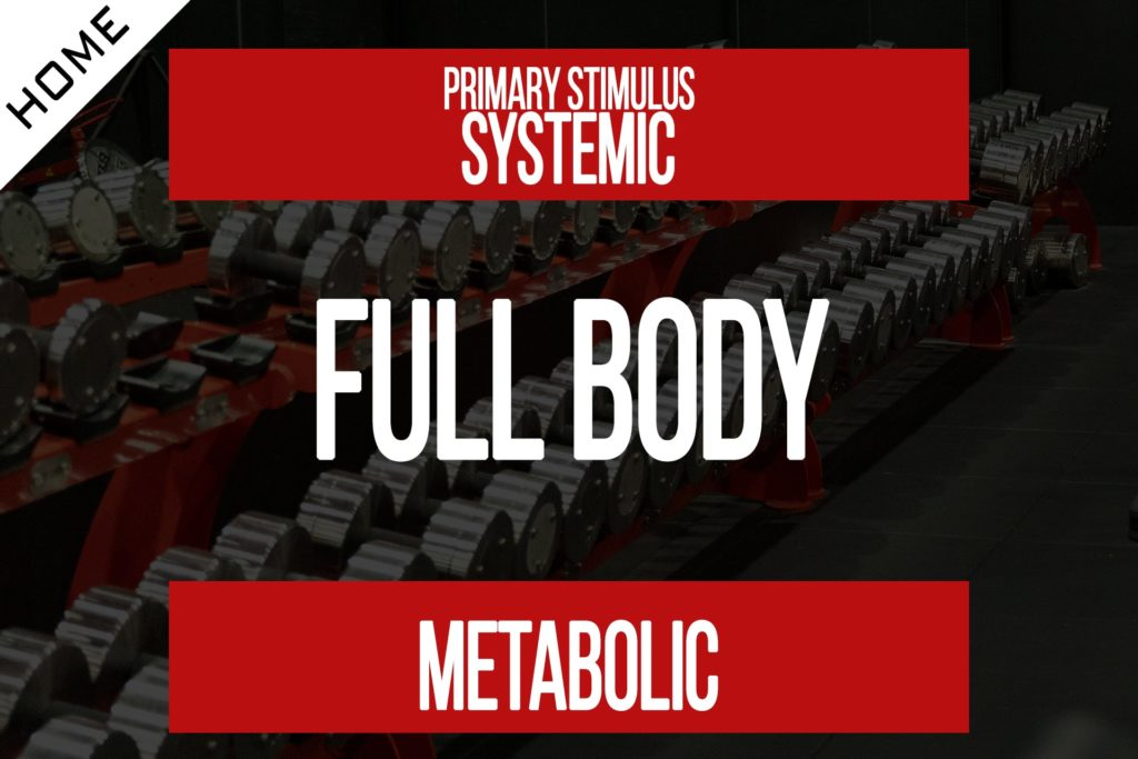 Full Body Workout [Program Membership]