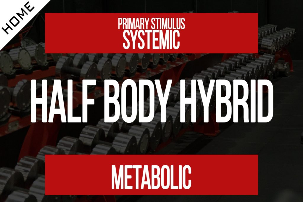 Half Body Hybrid Workout [Program Membership]