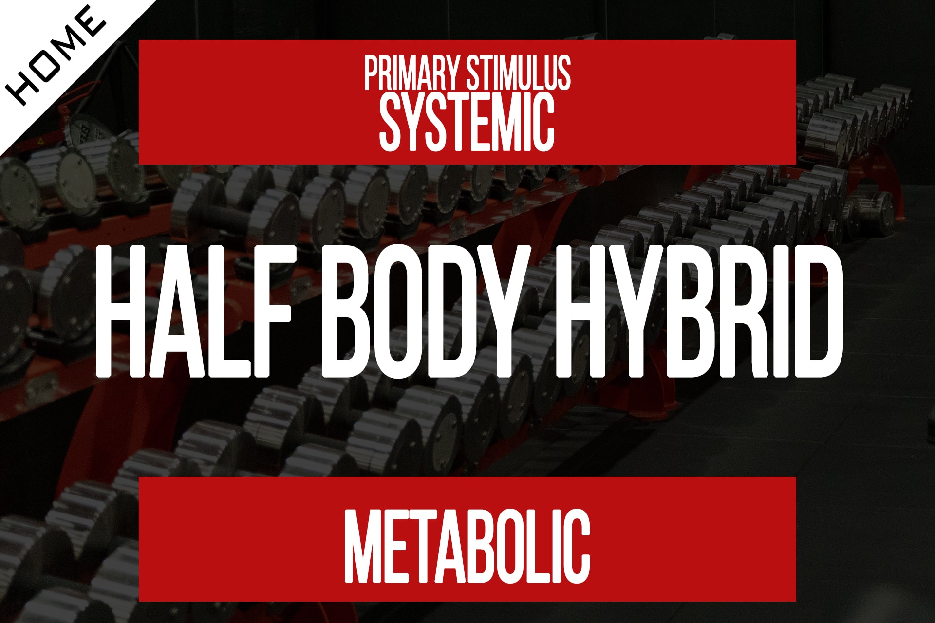 Home Workout – Half Body Hybrid