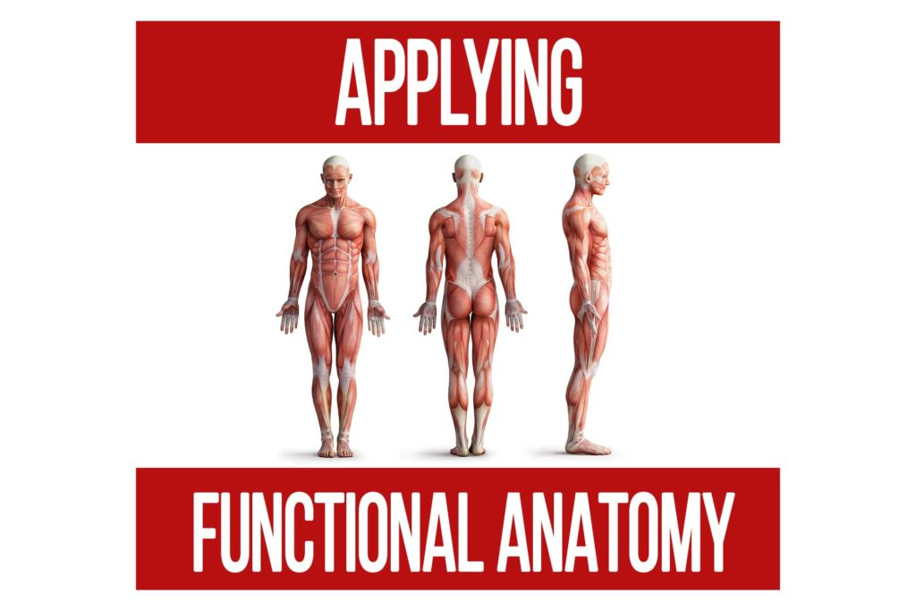 Applying Functional Anatomy