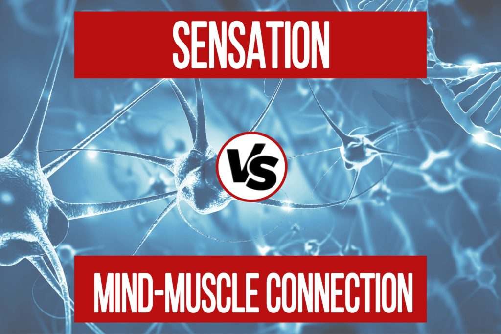 Sensation VS Mind-Muscle Connection