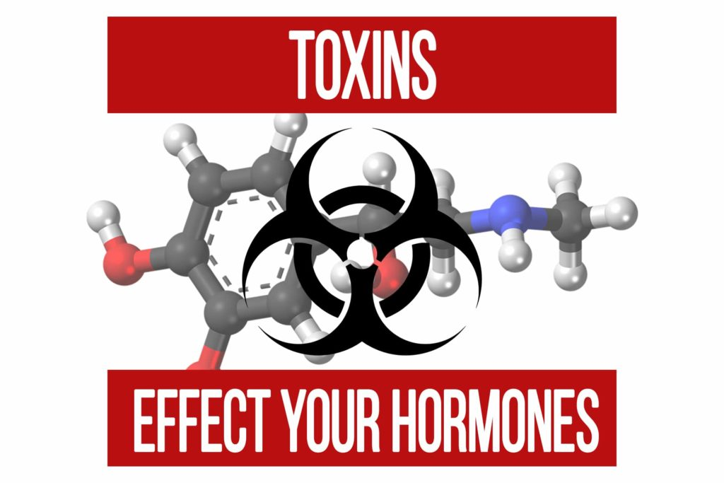 How Toxins Can Disrupt Hormones & Make You Fat