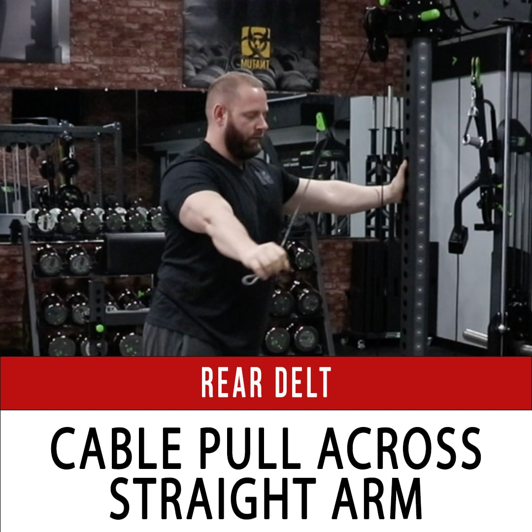 Rear Delt Cable Pull Across Straight Arm