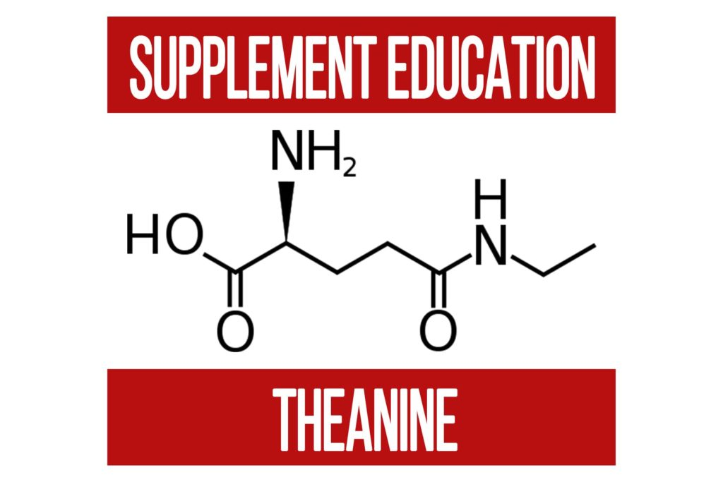 Supplement Education: Theanine