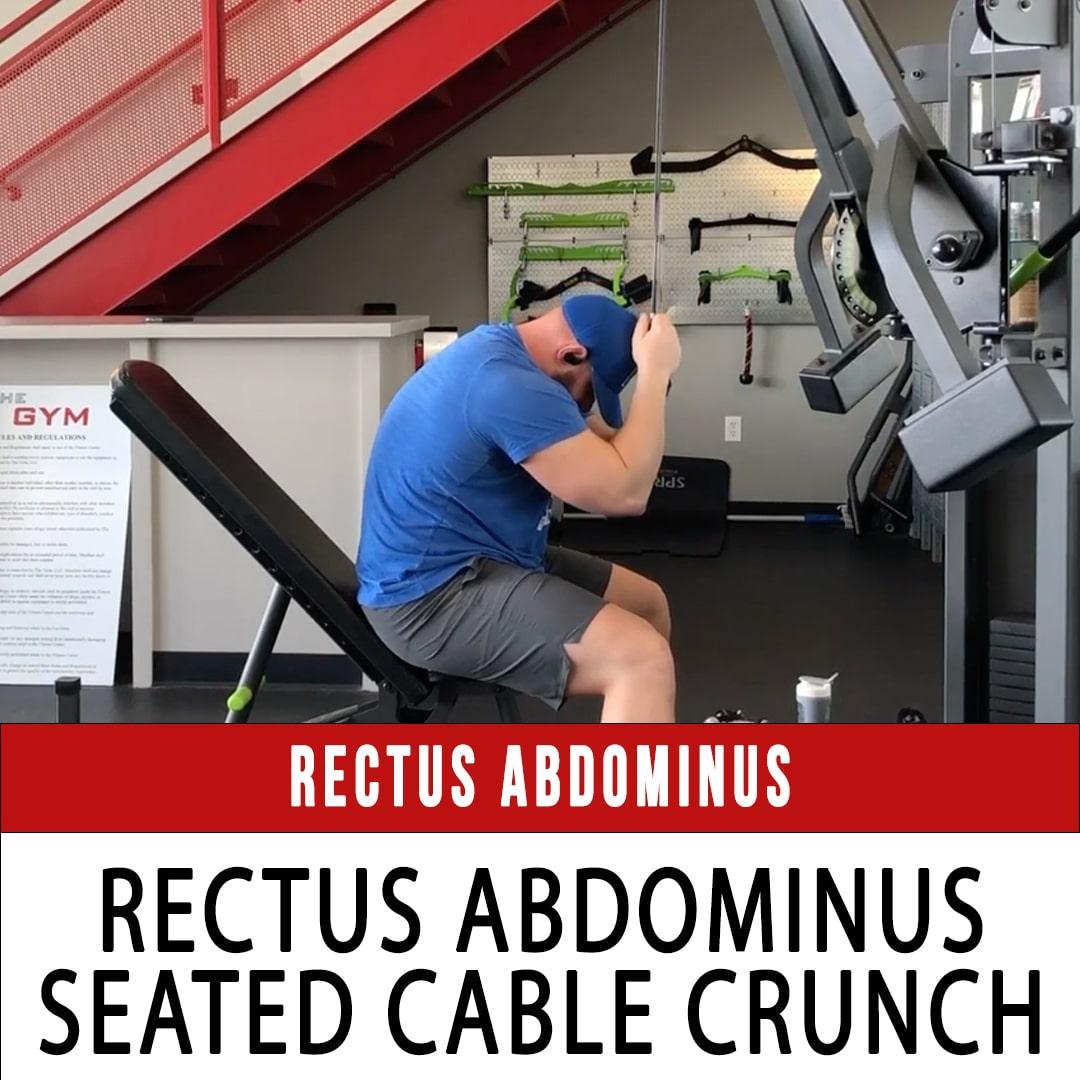 Omni Rectus Abdominus Seated Cable Crunch
