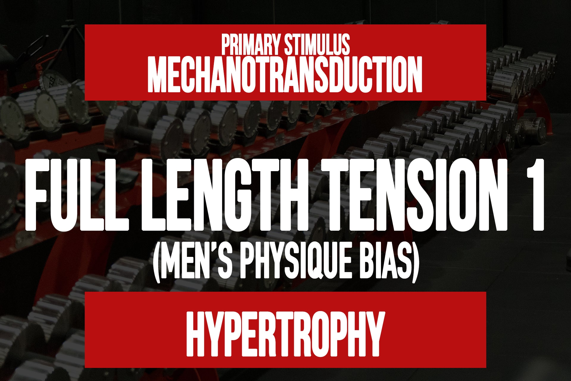 FLT 1 (Men's Physique)
