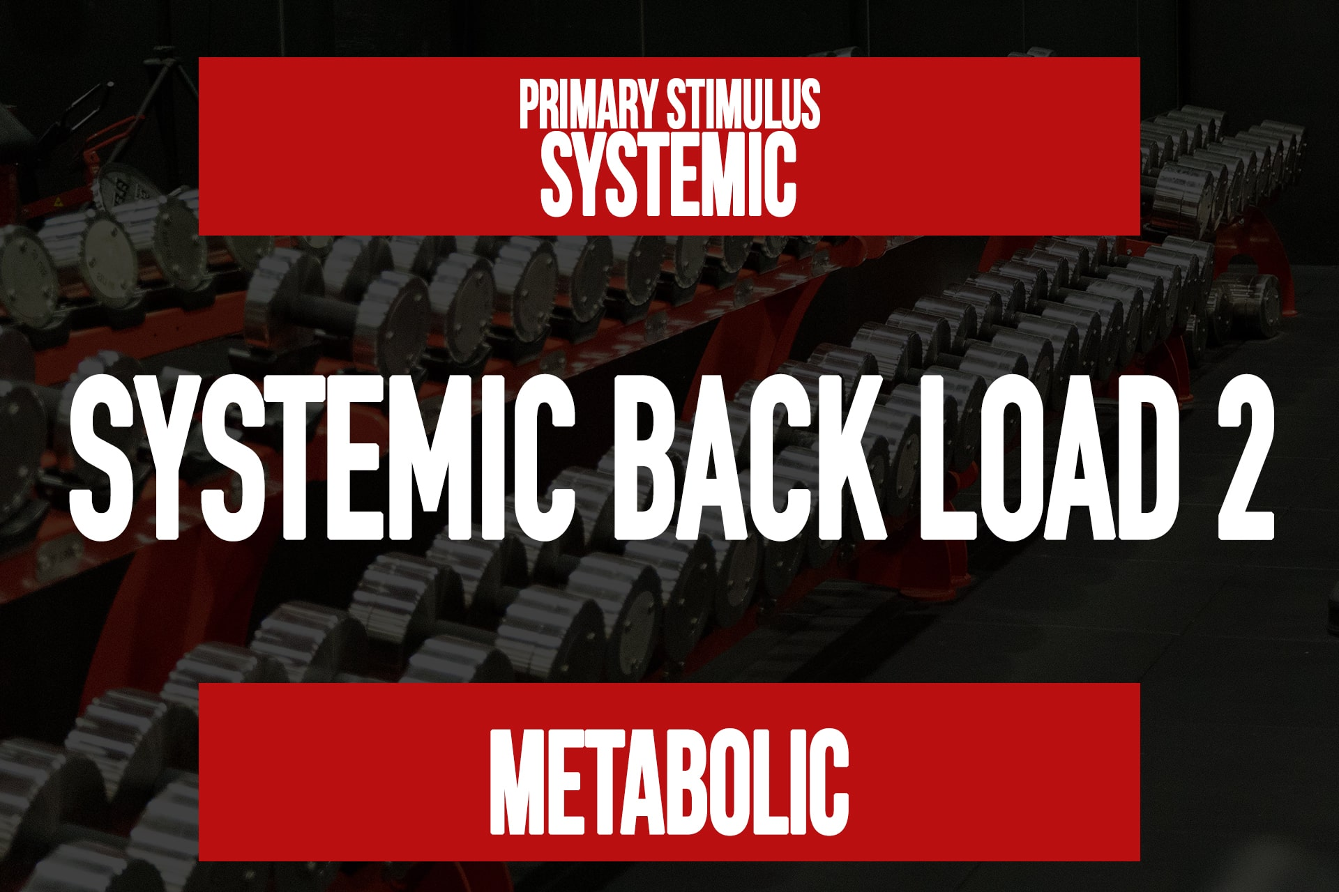 Systemic Back Load 2